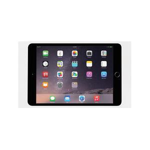 Surface Mount System iPad mini